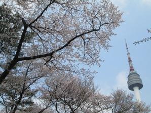 The Namsan Tower