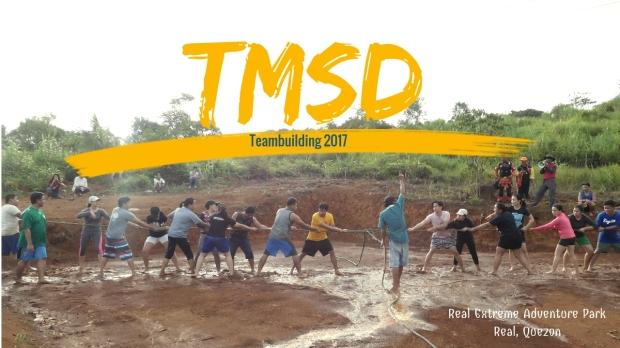 TMSD (1)
